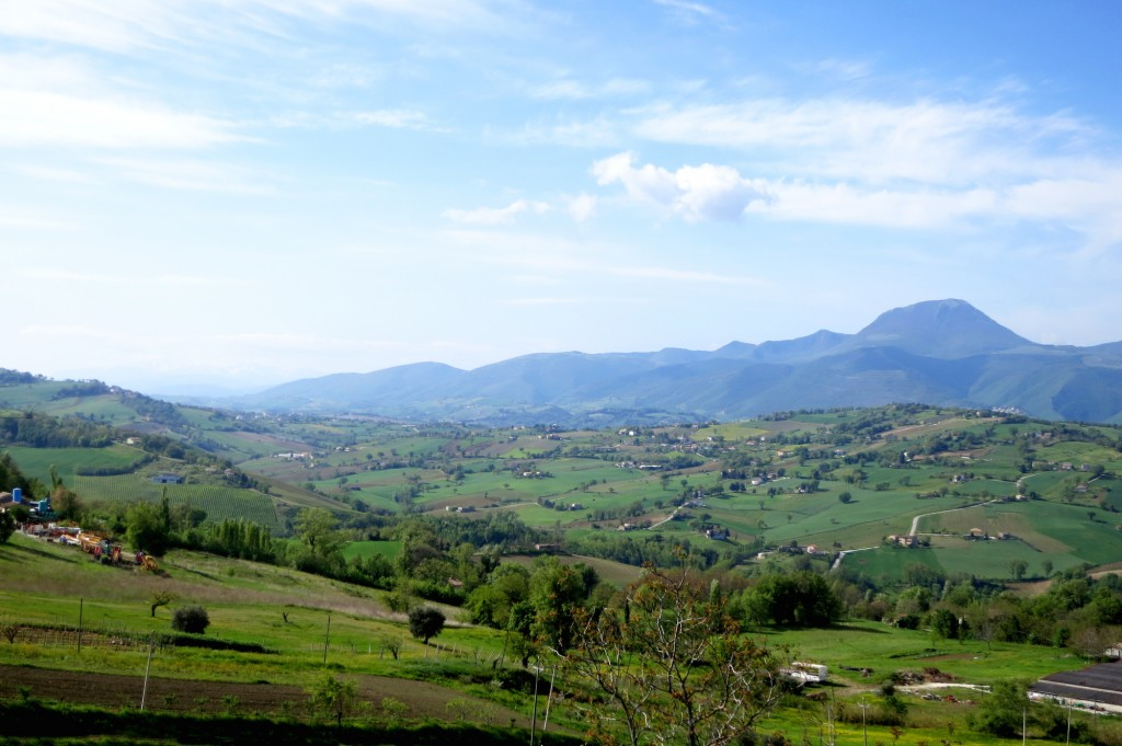 travel guide for le marche italy