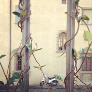 Hidden vespa in Florence