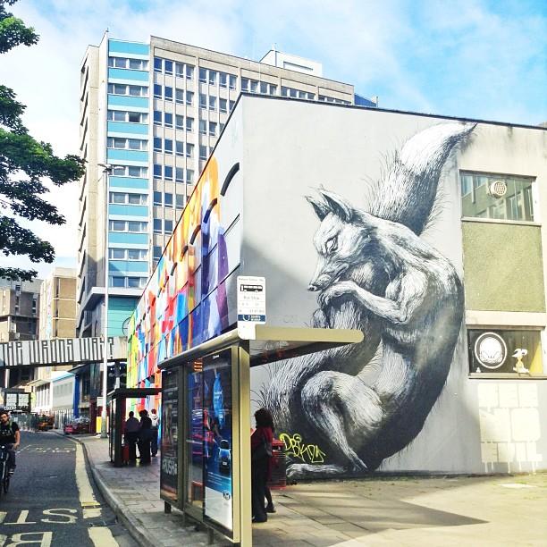 Roa, street artist