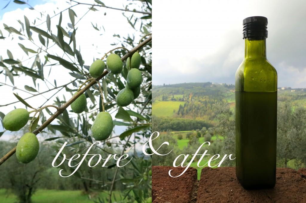 olio nuovo in Tuscany