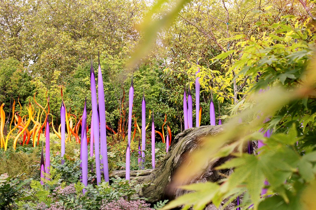 Chihuly in Seattle glass garden