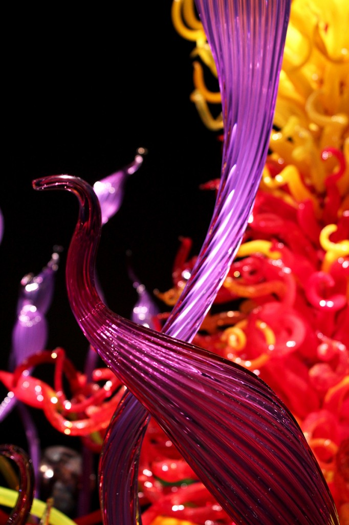 Mille Fiori Chihuly wonderland in Seattle
