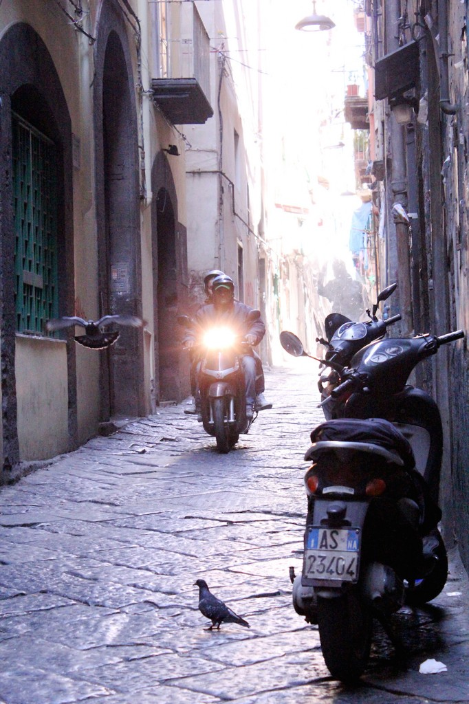 Visit Naples vespa and bird