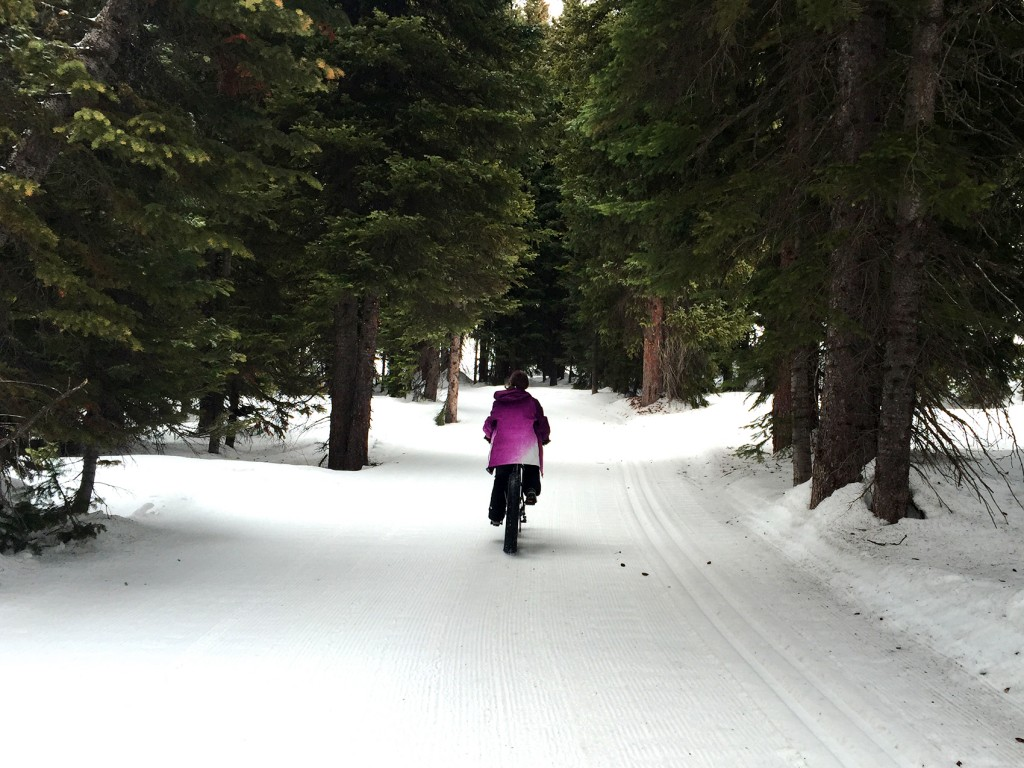 Fat biking in Targhee Resort